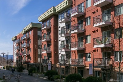 Bellingham Condo/Townhouse Pending: 1015 Railroad Ave #213