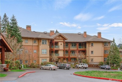 Issaquah Condo/Townhouse For Sale: 1000 SW Cabin Creek Lane #B 306