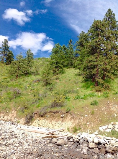 Chelan County, Douglas County Residential Lots & Land For Sale: Chelan Blvd