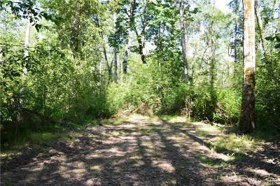 Blaine Residential Lots & Land For Sale: 3870 Holtzheimer Trail Rd