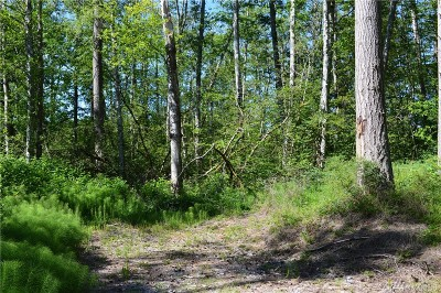 Blaine Residential Lots & Land For Sale: 3888 Holtzheimer Trail Rd
