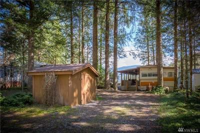 Deming Single Family Home For Sale: 204 Big River Blvd E
