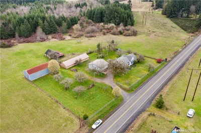 Chehalis Single Family Home For Sale: 179 Brown Rd E