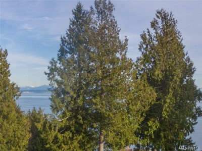 Port Ludlow Residential Lots & Land For Sale: 99 Baldwin Lane