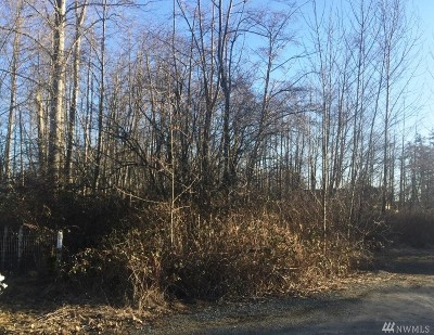 Blaine Residential Lots & Land For Sale: Sylvia St