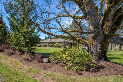 Bellingham Single Family Home For Sale: 4089 Yes Rd