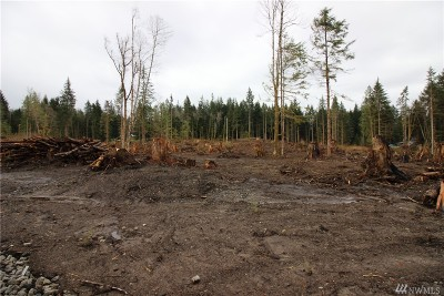 Maple Valley Residential Lots & Land For Sale: 23079039 364th Ave SE