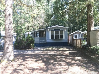 Maple Falls Single Family Home For Sale: 646 Riverside Dr