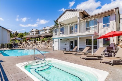 Chelan Condo/Townhouse For Sale: 808 W Manson Hwy #A303