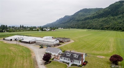 Everson , Nooksack, Sumas Farm For Sale: 5988 Jones Rd