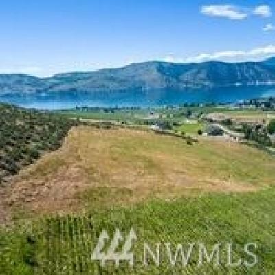 Chelan, Chelan Falls, Entiat, Manson, Brewster, Bridgeport, Orondo Residential Lots & Land For Sale: Chapman Road Lot C