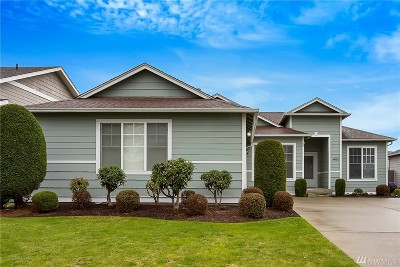Lynden Single Family Home Pending Inspection: 1400 Colony Ct