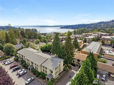 Kirkland Condo/Townhouse For Sale: 11801 100th Ave NE #A201