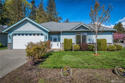 Lynden Single Family Home For Sale: 162 Cambridge