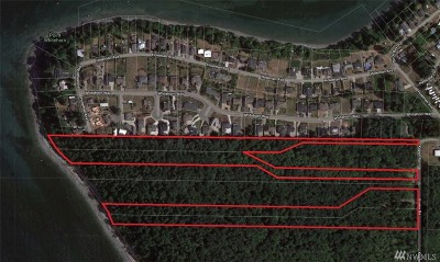 Blaine Residential Lots & Land For Sale: 6867 Koehn Rd