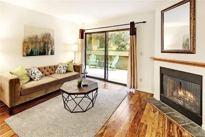 Condo/Townhouse Sold: 211 Summit Ave E #S114