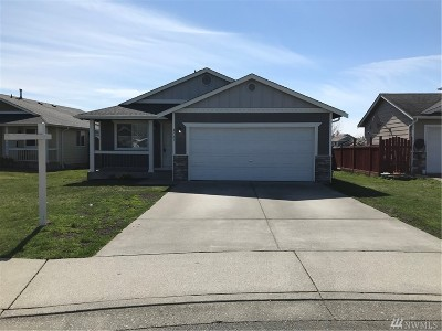 Whatcom County Single Family Home For Sale: 4787 Oyster Dr