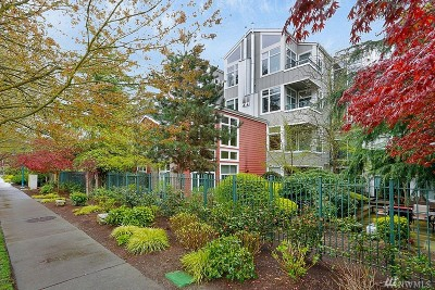 Kirkland Condo/Townhouse For Sale: 521 7th Ave #406