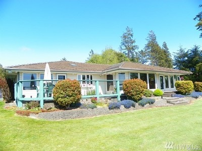 Grays Harbor County Single Family Home For Sale: 31 Rock View Lane