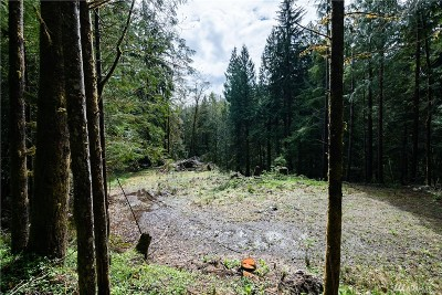 Issaquah Residential Lots & Land For Sale: SE 48th St