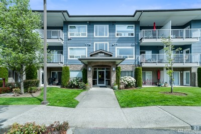 Whatcom County Condo/Townhouse Pending: 500 Darby Dr #107