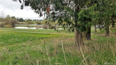 Enumclaw Residential Lots & Land For Sale: 42000 188th Ave SE