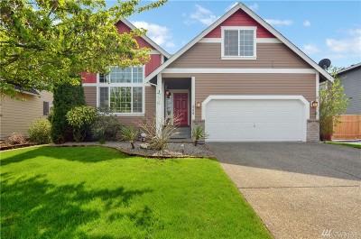 Pierce County Single Family Home For Sale: 224 Michell Lane NE