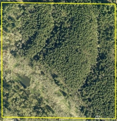 Lewis County Residential Lots & Land For Sale: W Carson St