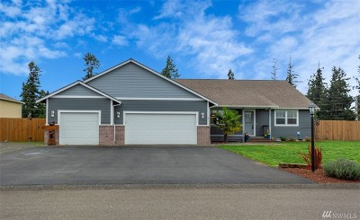 Tenino Single Family Home For Sale: 17601 Dusty Ct SW
