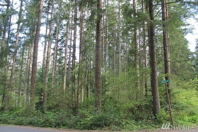 Yelm Residential Lots & Land For Sale: 17306 SE View Dr