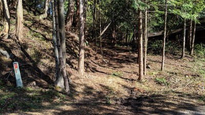 Residential Lots & Land For Sale: 498 Colville Wy