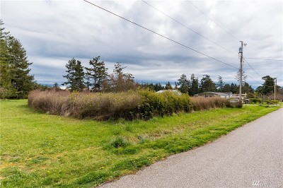 Oak Harbor Residential Lots & Land For Sale: Donald Ave