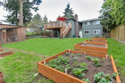 Seattle Single Family Home For Sale: 8408 6th Ave SW