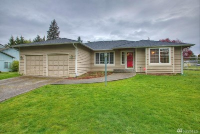 Steilacoom Single Family Home For Sale: 519 Galloway St