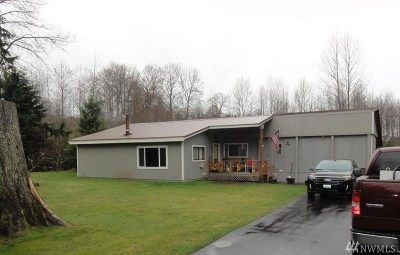 Lewis County Single Family Home For Sale: 411 Mineral Creek Rd N