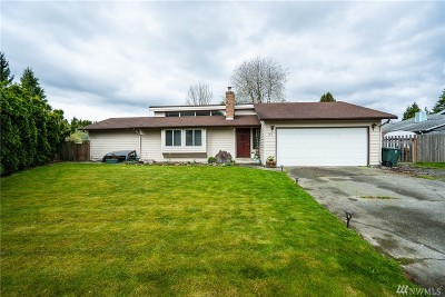 Skagit County Single Family Home For Sale: 817 Dana Dr