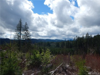 Lewis County Residential Lots & Land For Sale: 17 W Christin Rd