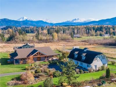 Bellingham Single Family Home For Sale: 6460 Everson Goshen Rd