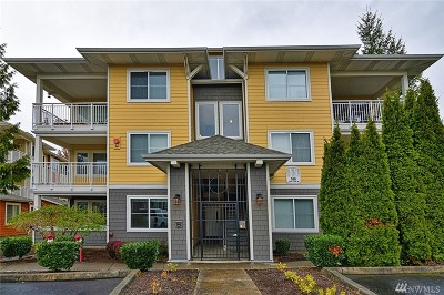 Sammamish Condo/Townhouse For Sale: 560 225th Lane NE #B101