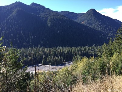 Pierce County Residential Lots & Land Pending: 17 Nf 7810