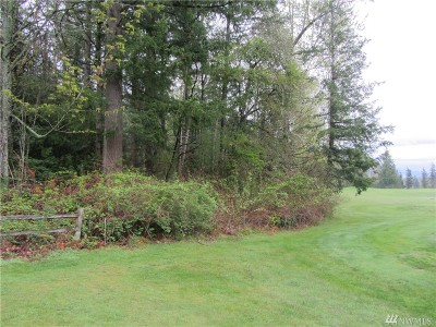 Whatcom County Residential Lots & Land For Sale: 6005 Birkdale Lane