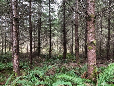 Tenino Residential Lots & Land For Sale: 217 Thompson Creek Rd SE