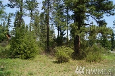 Residential Lots & Land For Sale: 89 Single Jack Ct.