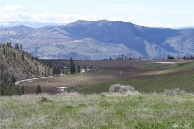 Chelan, Chelan Falls, Entiat, Manson, Brewster, Bridgeport, Orondo Residential Lots & Land For Sale: 156 Purtteman Gulch