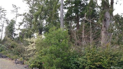Residential Lots & Land For Sale: 1101 309th Place