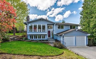 Kirkland Single Family Home For Sale: 8911 NE 136th St