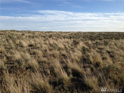 Residential Lots & Land For Sale: 25 Eagle Springs Ranch
