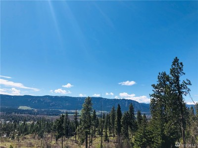 Residential Lots & Land For Sale: 6 Owl Ridge Dr
