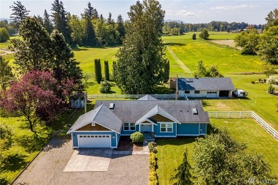Sedro Woolley Single Family Home For Sale: 22172 Cook Rd