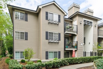 Condo/Townhouse Sold: 221 9th St #C303